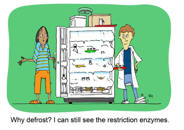 Cartoon of a lab manager gesturing to a completely frozen-over freezer saying