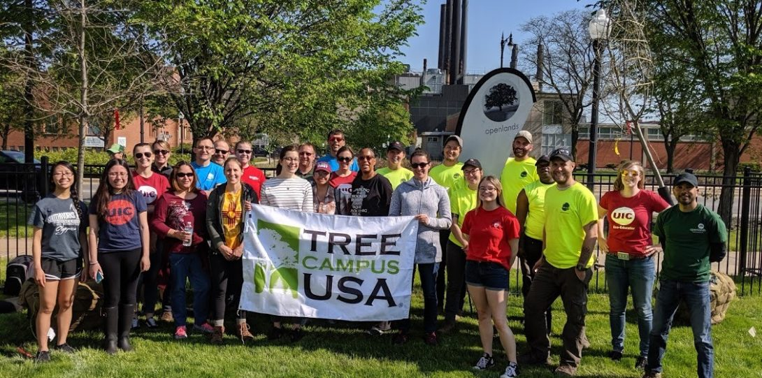 Staff from OpenLands, the Office of Sustainability, and volunteers at the 2019 tree planting